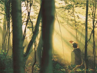 joseph grove